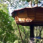 Treehouse Getaway – Only 1.5 Hours From Bogotá